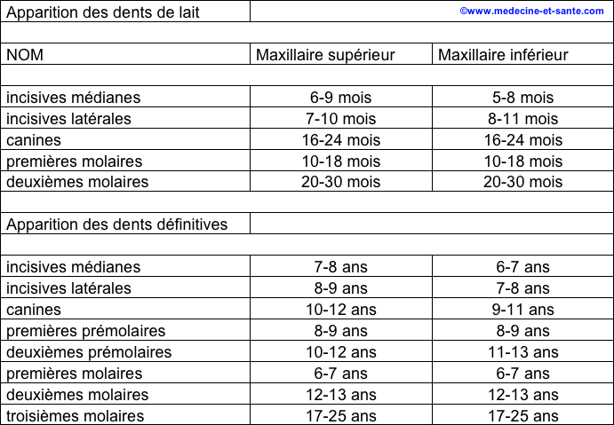 dentitionenfant1