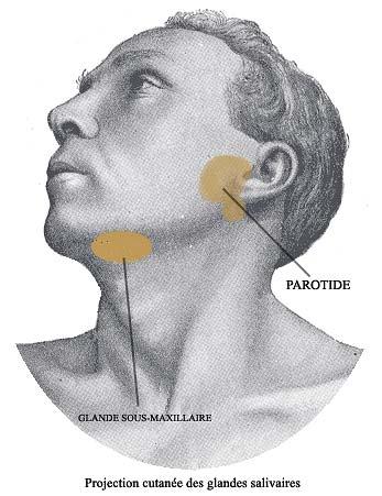 Ganglion au cou ou la gorge : est-ce grave
